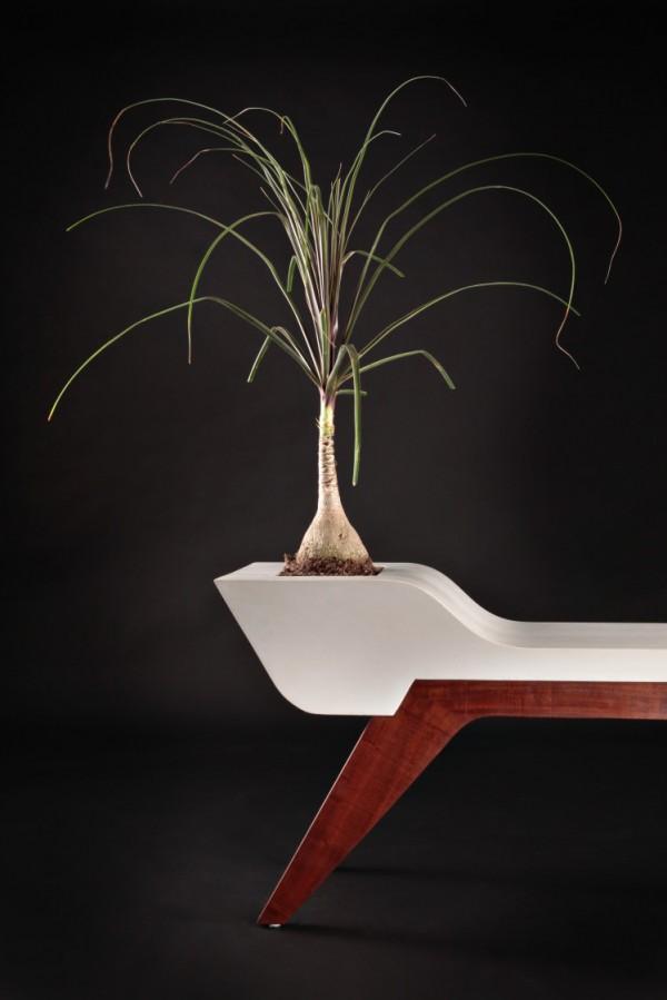 Banc en bois et béton avec fleurs ou plantes