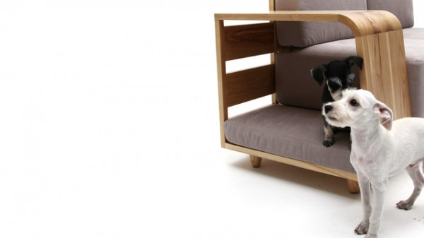 Le canapé qui pense aux chiens